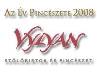 A VYLYAN LETT AZ ÉV PINCÉSZETE 2008-BAN