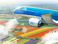 Haspókoknak kedvez a KLM