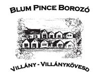 Blum Pince - Borozó Vendégház